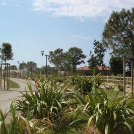 Lotissement clôture bois, plantations